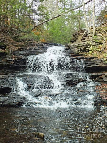 Onondaga Photograph - Onondaga 3 - Ricketts Glen by Cindy Treger