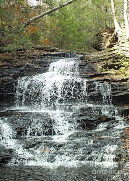 Onondaga Photograph - Onondaga 5 - Ricketts Glen by Cindy Treger