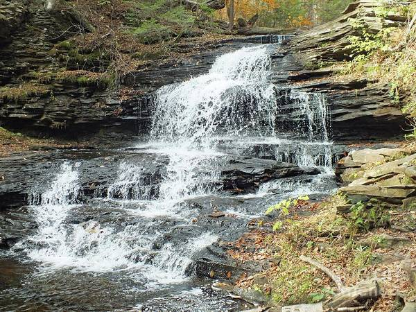Onondaga Photograph - Onondaga 6 - Ricketts Glen by Cindy Treger