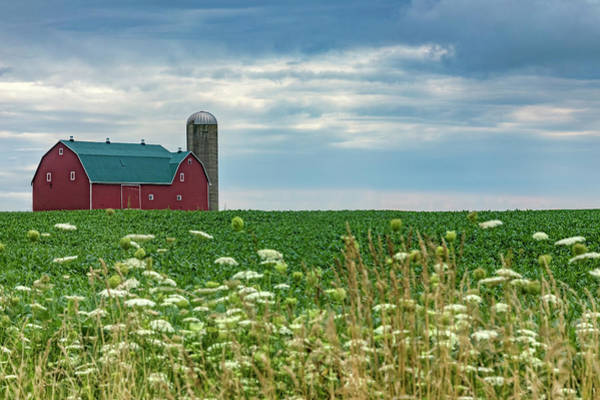 Felder Wall Art - Photograph - Ontario Barn - Canada by Joana Kruse