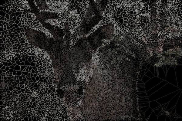 Digital Art - Ontario Caribou by Stephane Poirier