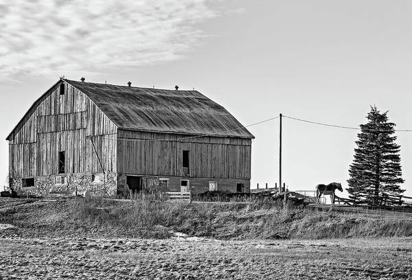 Hockley Valley Photograph - Ontario Farm 5 Bw by Steve Harrington