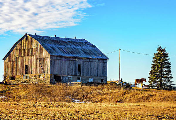Hockley Valley Photograph - Ontario Farm 5 by Steve Harrington