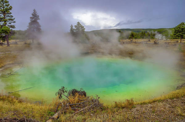 Wall Art - Photograph - Opal Spring Yellowstone National Park by Scott McGuire