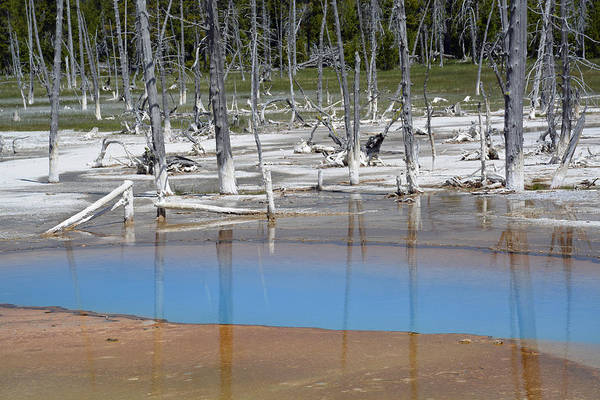 Photograph - Opalescent Pool In Yellowstone National Park by Bruce Gourley