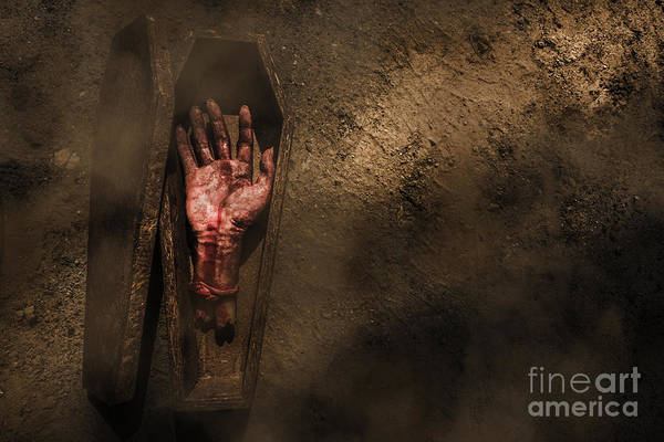 Victim Photograph - Open Case Of Revenge by Jorgo Photography - Wall Art Gallery