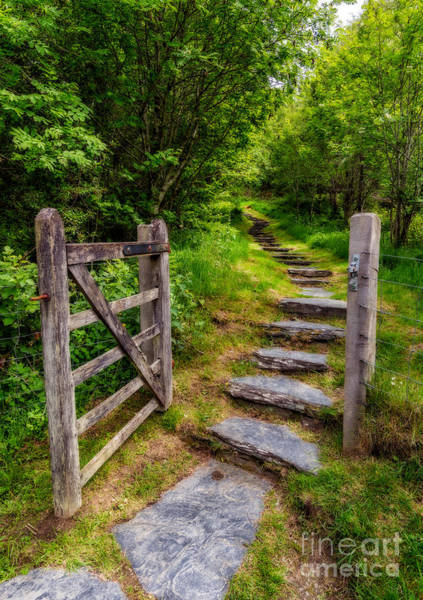 Hinges Photograph - Open Country Gate by Adrian Evans