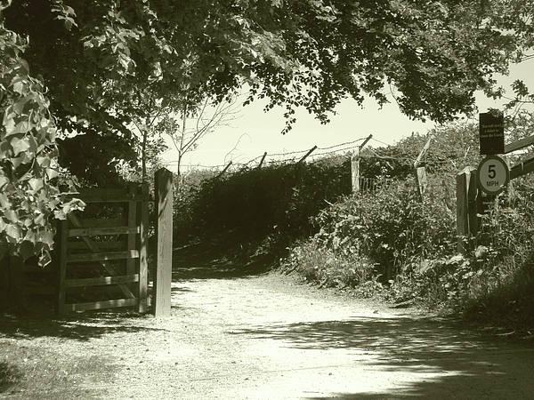 Photograph - Open Gate by Roberto Alamino