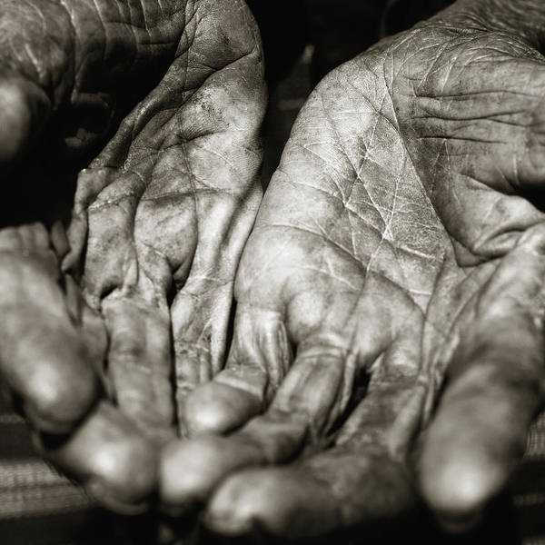 Awe Photograph - Two Old Hands by Skip Nall