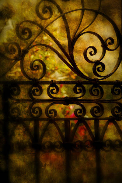 Artful Photograph - Open Iron Gate by Susanne Van Hulst