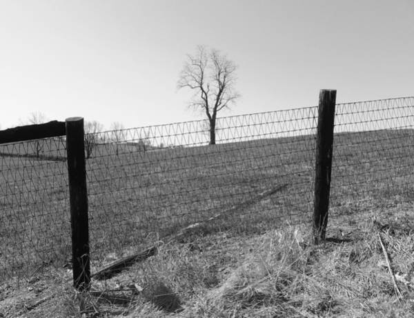 Photograph - Open Land by Christopher Brown