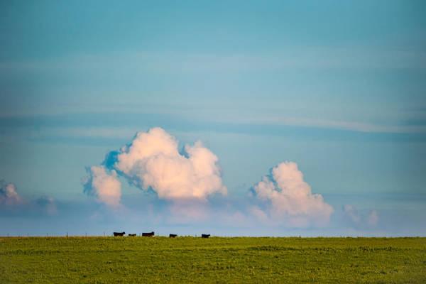 Photograph - Open Range Horizon by Jeff Phillippi
