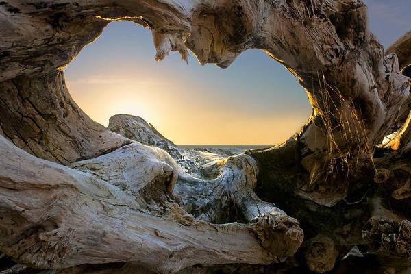 Wall Art - Photograph - Open The Window by Dmitry Kulagin