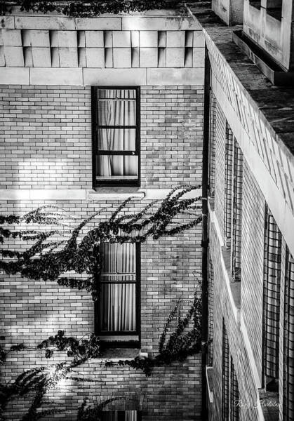 Photograph - Open Window by Roxy Hurtubise