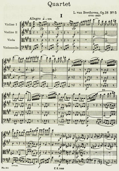 Memorabilia Wall Art - Drawing - Opening Page Of Score For String Quartet Number 5 In A Major by Ludwig van Beethoven