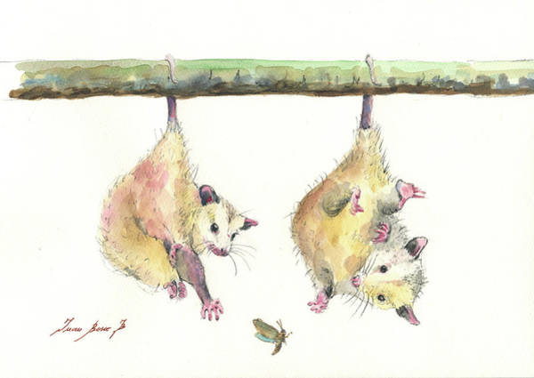 Wall Art - Painting - Opossums by Juan Bosco