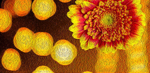 Photograph - Orange And Red Chrysanthemum Oil Painting Art by John Williams
