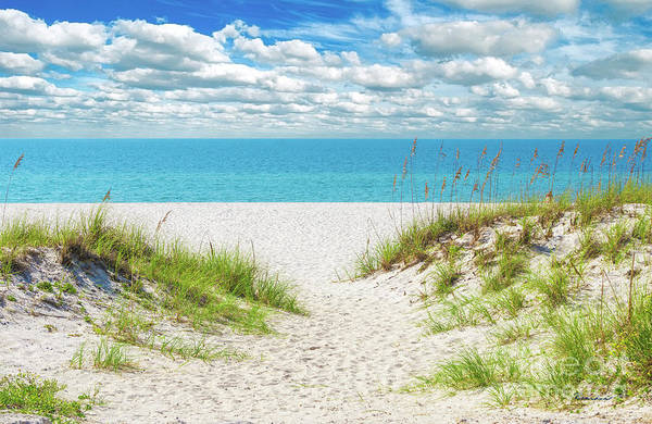 Orange Beach Al Seascape 1086a Art Print