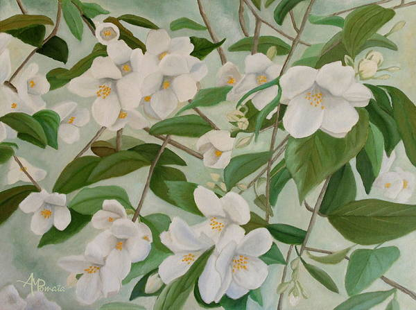 Painting - Orange Blossoms by Angeles M Pomata