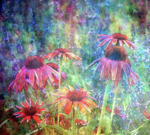 Photograph - Orange Coneflowers And Lavender 1169 Idp_2 by Steven Ward