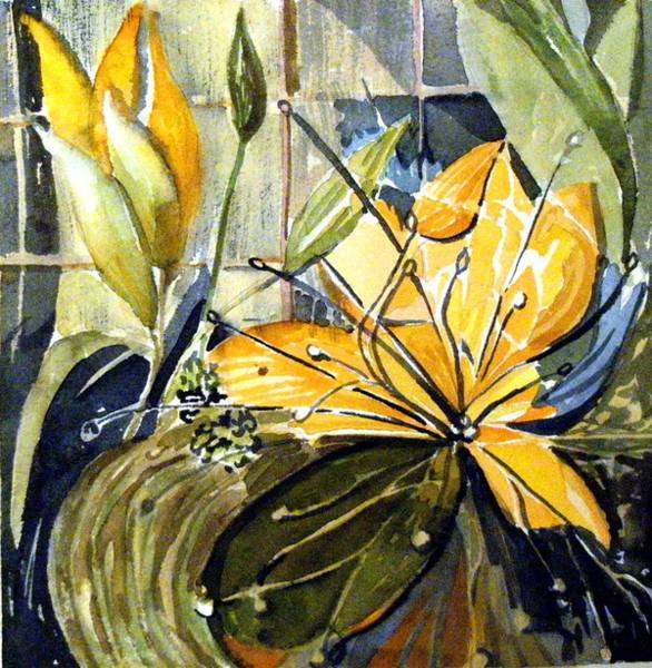 Lily Drawing - Orange Day Lily by Mindy Newman