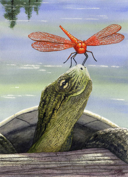 Turtle Painting - Orange Dragonfly by Catherine G McElroy