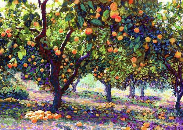 Harvest Wall Art - Painting -  Orange Grove Of Citrus Fruit Trees by Jane Small