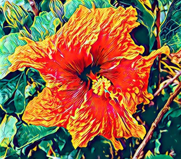 Orange Hibiscus In Crepe - Full View Art Print
