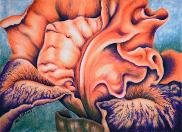 Painting - Orange Iris by Lori Sutherland
