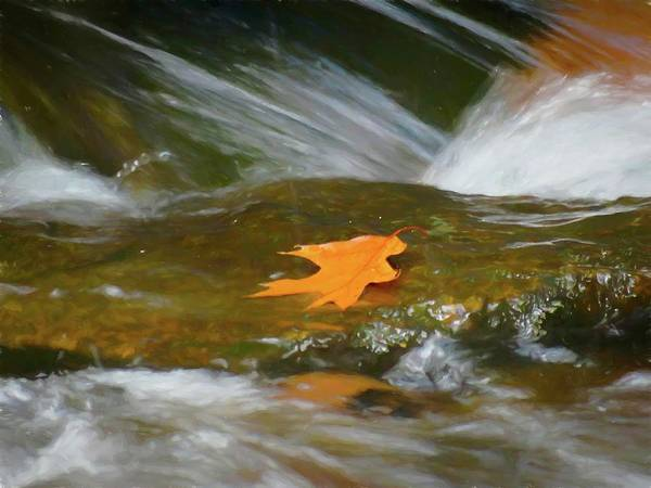 Digital Art - Orange Leaf On Flowing Water. by Rusty R Smith