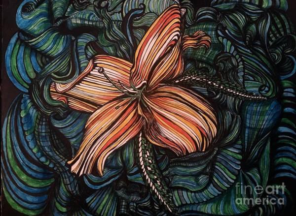 Drawing - Orange Lily by Mastiff Studios