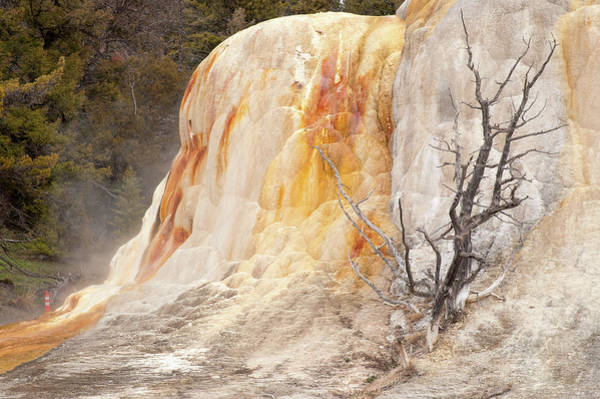 Photograph - Orange Mound Spring by Steve Stuller
