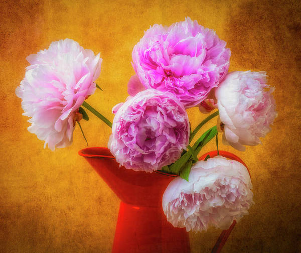 Pitcher Plant Photograph - Orange Pitcher And Peonies by Garry Gay
