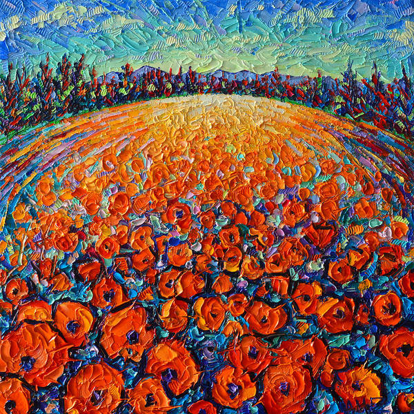 Painting - Orange Poppies Magic Modern Impressionist Landscape Impasto Knife Oil Painting By Ana Maria Edulescu by Ana Maria Edulescu