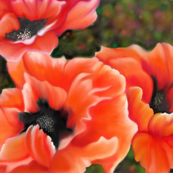 Painting - Orange Poppies by Sand And Chi