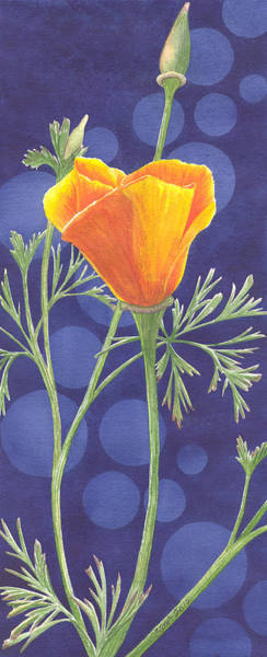 Painting - Orange Poppy by Catherine G McElroy