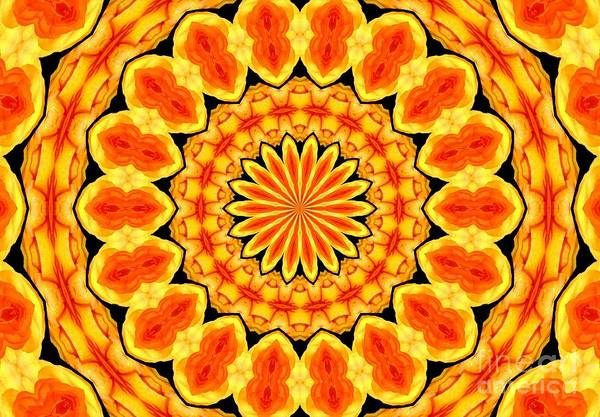 Photograph - Orange Ranunculus Flower Kaleidoscope 1 by Rose Santuci-Sofranko