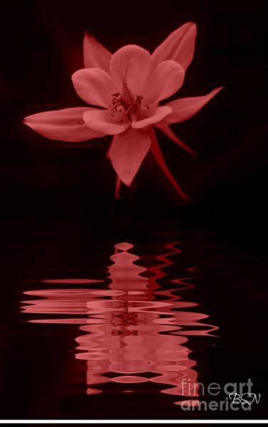 Photograph - Orange Reflection by Barbara S Nickerson