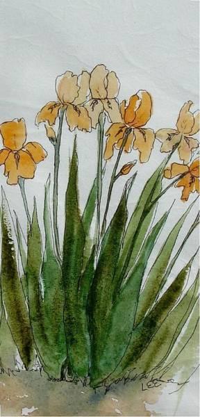 Orange Sprng Art Print