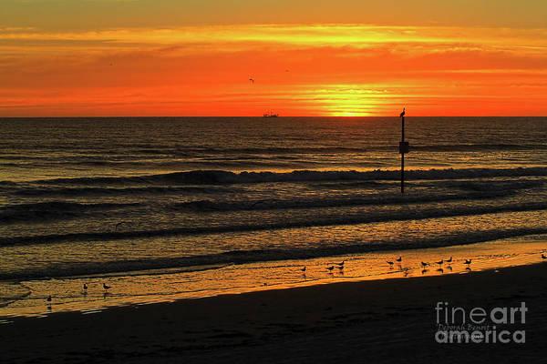 Photograph - Orange Sunrise Morning by Deborah Benoit