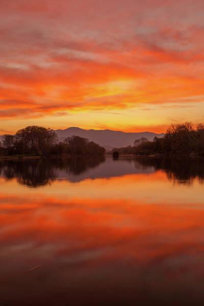 Photograph - Orange Sunset by Daniele Fanni