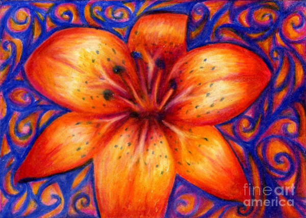 Drawing - Orange Tiger Lily Drawing by Kristin Aquariann