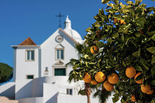Photograph - Orange Tree And Church - Castro Marim, Portugal by Barry O Carroll