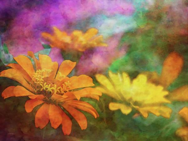 Photograph - Orange Zinnia 2753 Idp_2 by Steven Ward