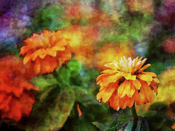 Photograph - Orange Zinnias 2539 Idp_2 by Steven Ward