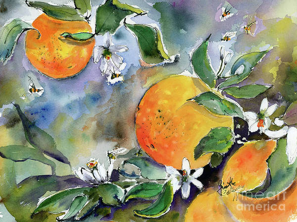 Painting - Oranges Blossoms And Bees Watercolor by Ginette Callaway
