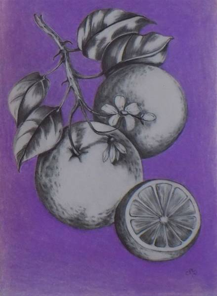 Drawing - Oranges by Chuck Caputo