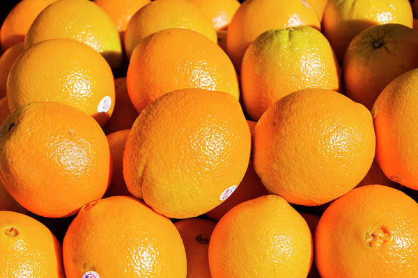 Photograph - Oranges by Daniel Murphy