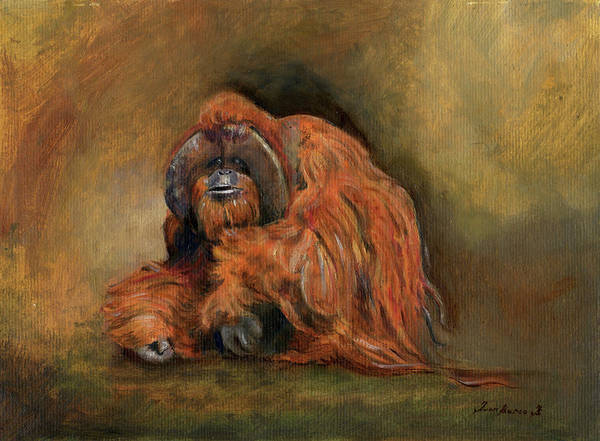 Wall Art - Painting - Orangutan Monkey by Juan Bosco