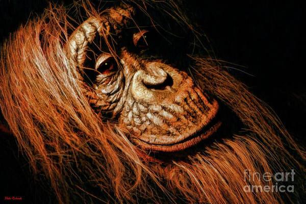 Photograph - Orangutan Portiort by Blake Richards